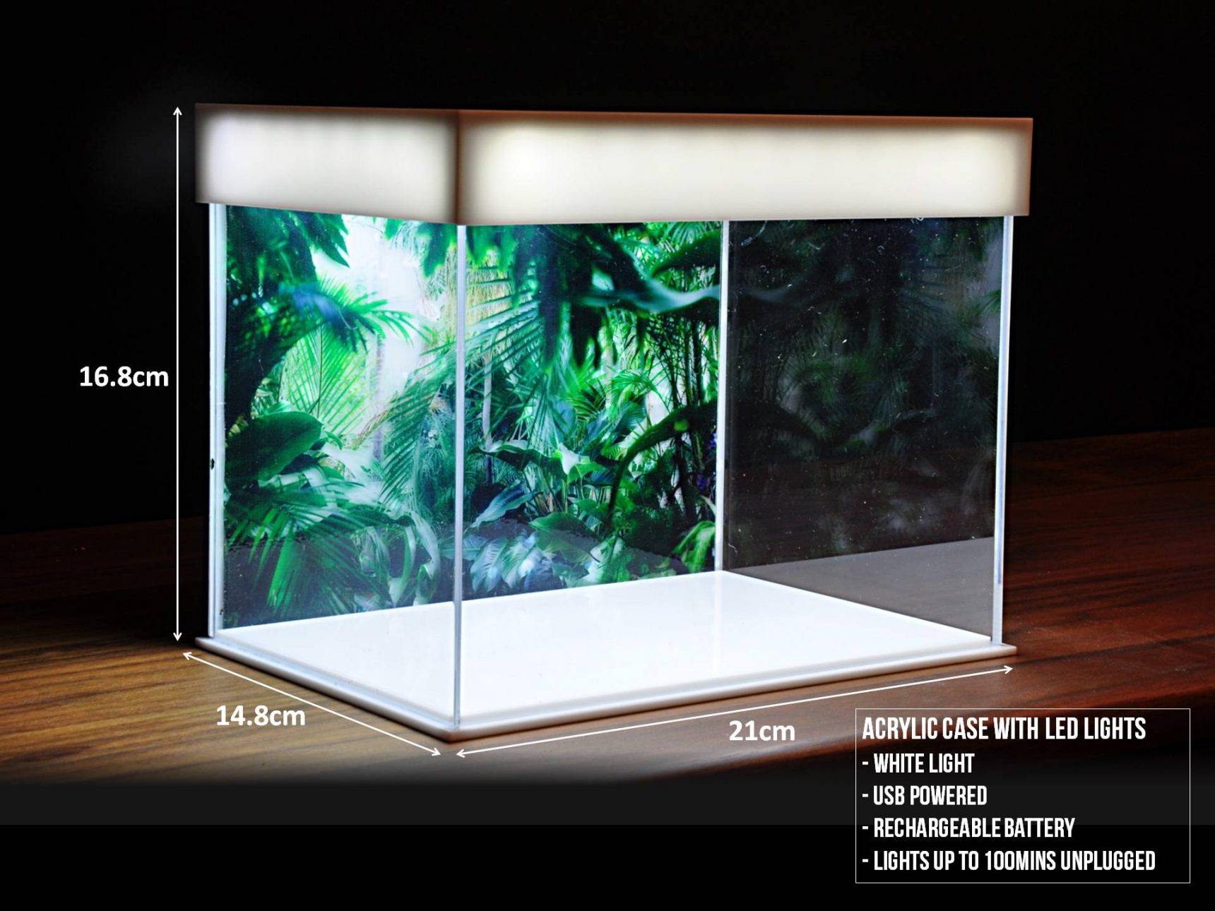 Miniature Stories 21cm Acrylic Case with LED Lights measurements