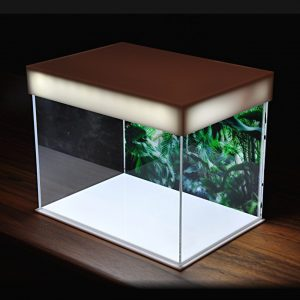 Miniature Stories 21cm Acrylic Case with LED Lights top
